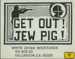 Nazi USA