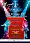 Festival Boschese