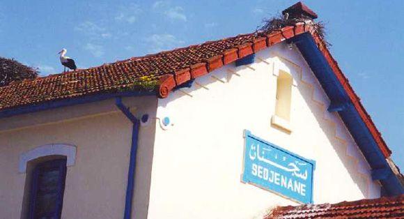 Sejnane - Tunisie