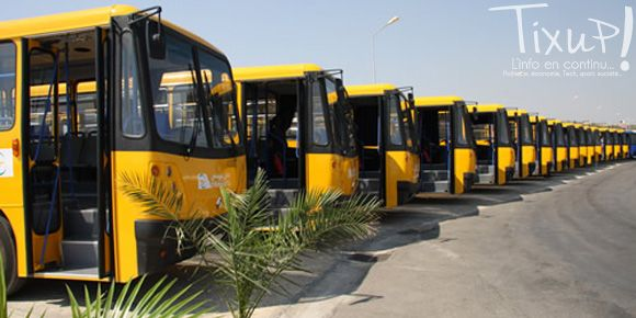 Bus Transtu