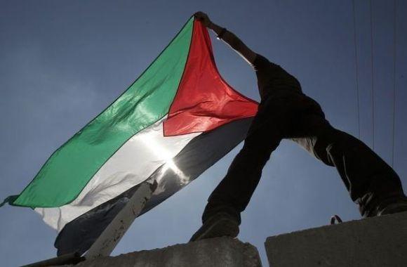 Palestine flag drapeau