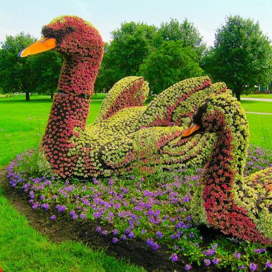 sculpture-plante-3-545x545