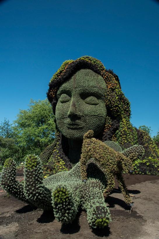 sculpture-plante-7-545x817