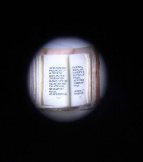 le-premier-chapitre-de-genese-en-minuscule_131917_w460