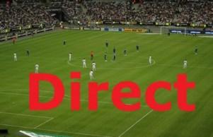France Finlande Streaming en Direct