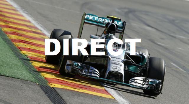 Regarder Grand Prix F1 Brésil 2014 en direct streaming : Retransmission course Sao Paulo, gagnant