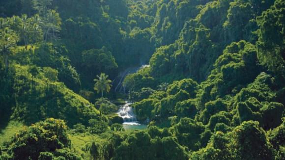 Thalassa sur Vanuatu ce 9 octobre sur France 3