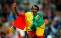 Voir les Jeux Olympiques en direct : Vidéo des épreuves et résumé des médailles