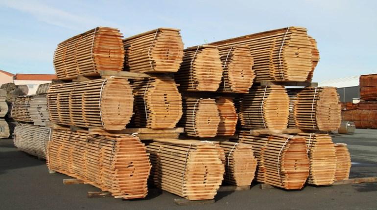 Regarder Cash Investigation sur France 2 : Voir le documentaire sur la razzia du bois en vidéo
