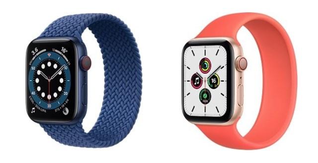 Apple Watch 100 Million Sales