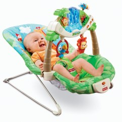 Vibrating Chair Baby Dxracer Thailand 5 Best Fisher-price Infant Bouncer – Great Life Savor   Tool Box