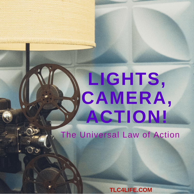 Light, Camera, Action!