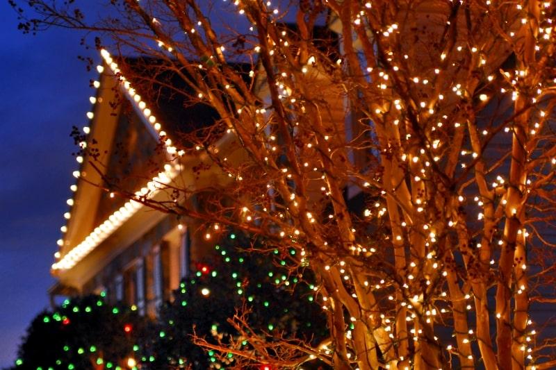 Holiday Lighting 32