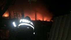 Pompierii au intervenit să stingă incendiul izbucnit la cele două case. FOTO ISU Delta Tulcea