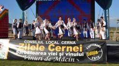 Ziua comunei Cerna. FOTO Tlnews.ro