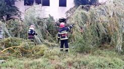 Pompierii tulceni au fost solicitați să intervină în nouă situații de urgență. FOTO ISU Tulcea