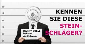 """Steinschlag """"Kuhauge"""" - KS-Autoglas-Zentrum Schöntal-Bieringen"""