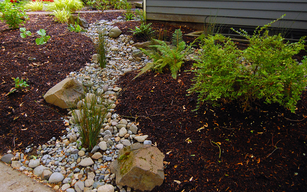 control rain runoff with landscaping