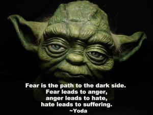 Fear is the path to the dark side. Fear leads to anger, anger leads to hate, hate leads to suffering. -Yoda