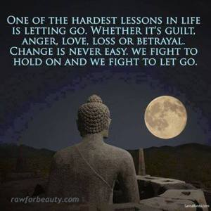 """One of the hardest lessons in life is letting go. Whether it's guilt, anger, love, loss, or betrayal, change is never easy. We fight to hold on and we fight to let go."""