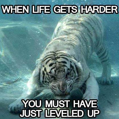 When life gets harder, you must have just leveled up.