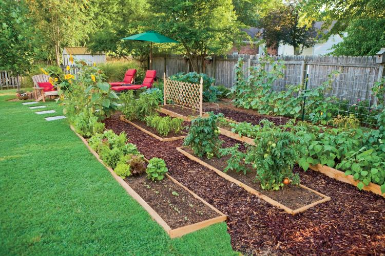 Edible Landscaping How to Eat Your Yard