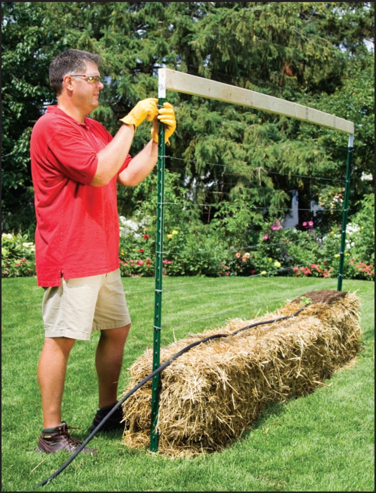 Solve Your Soil Issues With Straw Bale Gardening The Tennessee Magazine