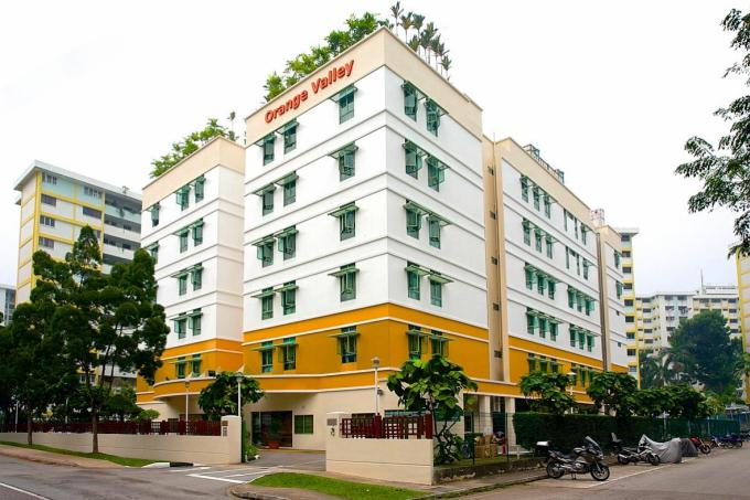 Moh Why Nursing Home Probe Needs More Time Latest