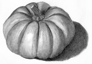 pumpkin drawing with shading. charcoal pumpkin drawing with shading w