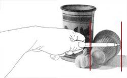 Comparing first element's measurement to flowerpot. C. Rosinski