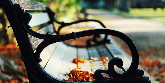 Autumn Park Bench