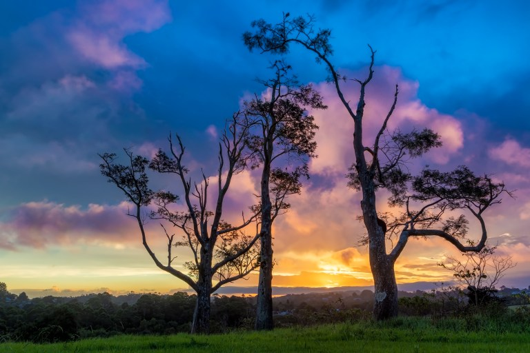 Three Tree Hill Sunset Art Photography