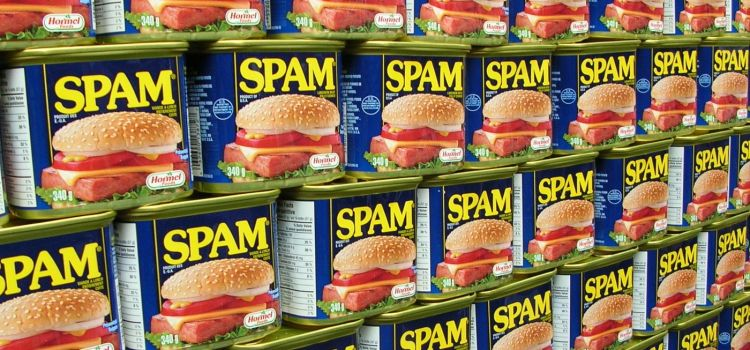 What is Spam Made of