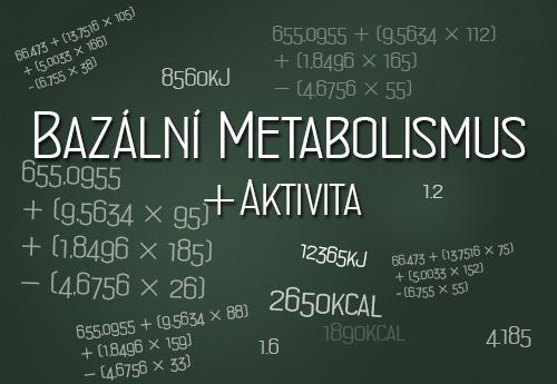 Bazální metabolismus a aktivita