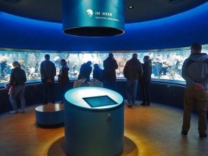 Viele Menschen vor dem Korallenriffbecken