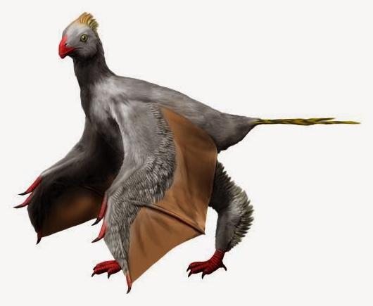 Ein spektakulärer Dino, Yi qi, der Fledersaurier