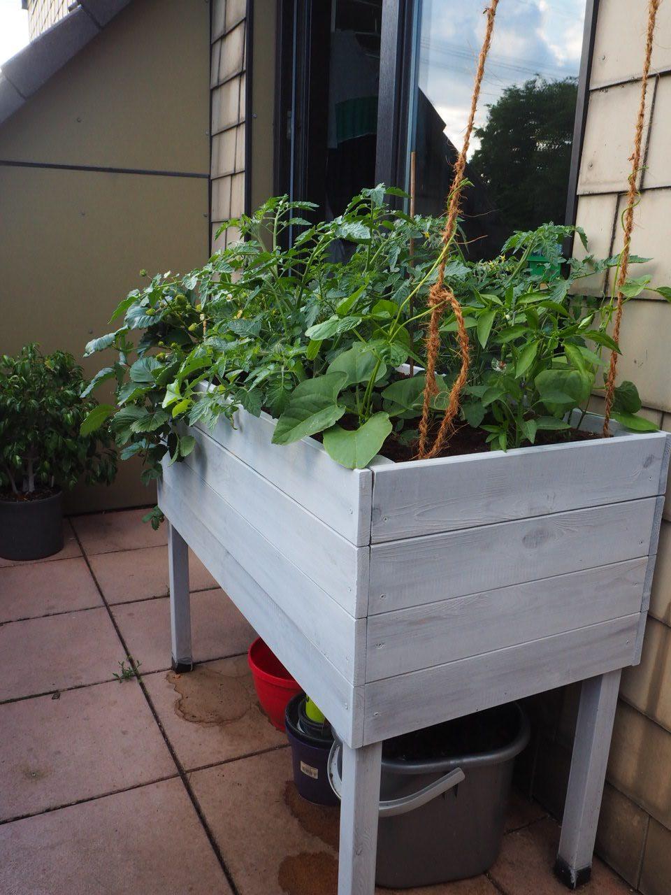 Kiste auf dem Balkon