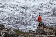 Glacierfield
