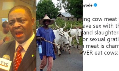 Femi Fani-Kayode says he stopped eating cow meat