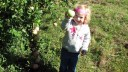 Charlotte and some more good apples