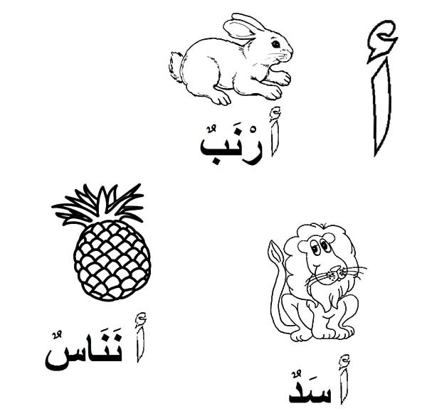 Arabic Alphabet for Lion Rabbit and Pineapple Coloring