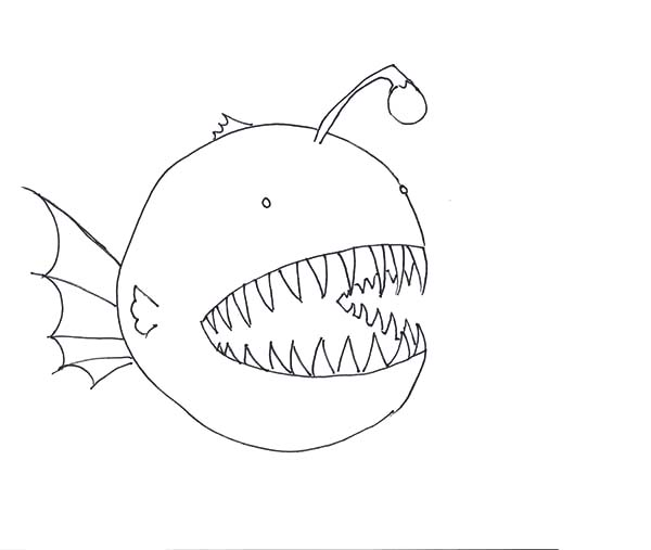 How To Draw Angler Fish Coloring Pages : Best Place to Color
