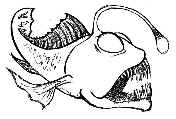 Sketch Of Angler Fish Coloring Pages : Best Place to Color