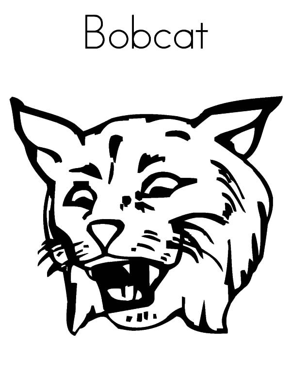 Pin Bobcat-skid-steer-colouring-pages on Pinterest