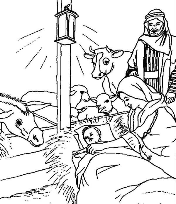 Bible Christmas Story Animals Welcoming the Birth of