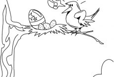 Baby Birds In Bird Nest Coloring Pages : Best Place to Color