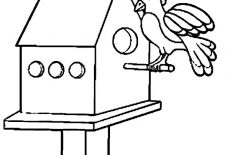 Bird House At Flower Garden Coloring Pages : Best Place to