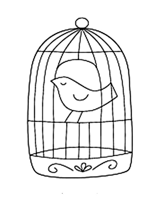 How to Draw Bird Cage Coloring Pages: How to Draw Bird
