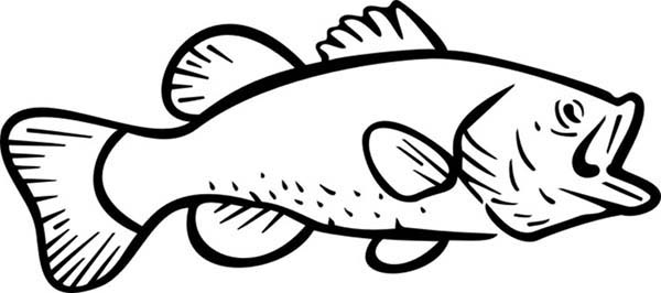 Online Coloring Pages Of Bass Fish Coloring Pages
