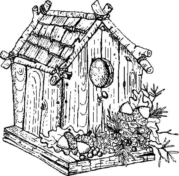 Traditional Bird House Coloring Pages: Traditional Bird